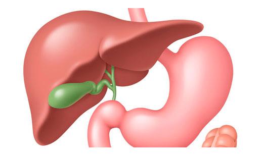 Горький привкус во рту : причины, симптомы, диагностика, лечение